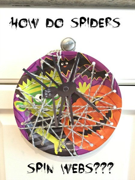 How Do Spiders Spin Webs for Kids